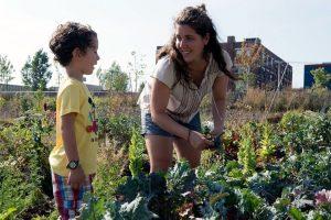 L'été sera fertile en découvertes au Virage – campus MIL!